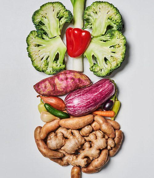 sindirim sistemine faydalı besinler, sindirimi kolay besinler, sindirimi kolay hale getiren besinler